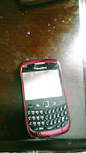 Blackberry with case and charger