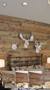 PINE - Shiplap, T&G, baseboards; BC Best Quality