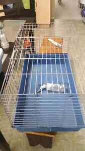 Hamster or Rabbit Cage with Bottle  In Excellent condition and c