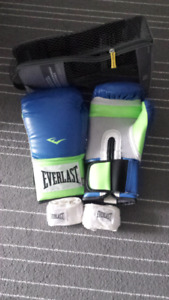 Everlast ever fresh 14oz professional heavy bag gloves