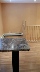 New and Nice 2 bedroom for rent available December 1st Regina Regina Area image 3