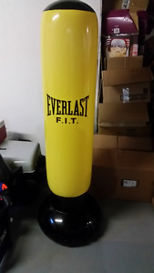 Everlast air/water filled puching bag