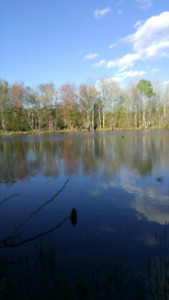23+ acres Recreational land for sale