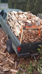 Unseasoned firewood