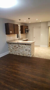 2 Bedroom Close to Chrysler Fully Renovated OPEN HOUSE TUESDAY!
