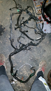 Fillage Harness Acura Rsx Type s 2002 a 2004