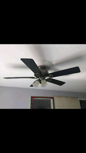 Ceiling fan and medallion