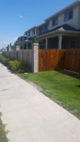 Wooden Fence & Deck staining service