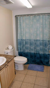 Spacious Student Rental – Perfect Off-Campus Housing Available