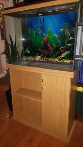 35 Gallon Fish Tank with Cabinet and Top Light