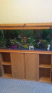 Selling a 55g fish tank and stand with heater
