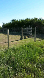 Acreage fencing and repair