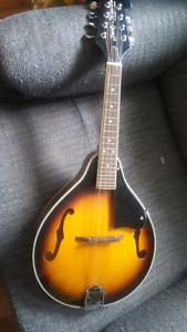 Smokey Mountain Mandolin model 505430 $200 obo