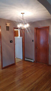 Large 3 bedroom apartment close to downtown