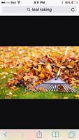 Leaf raking