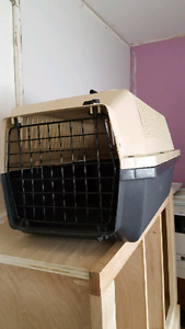 Pet carrier and kennel