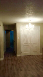 Basement Bachelor Apartment near Wonderland and Oxford available
