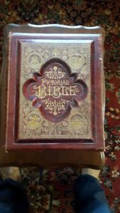 Pictorial Bible 1885