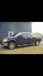 2009 Ford F150 SuperCrew Camionnette