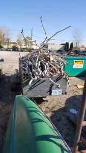Birch wood various length and sizes Sarnia Sarnia Area image 1