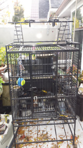 Two Large Bird Cages