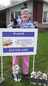 M & M Dog Walking & Pet Sitting Service