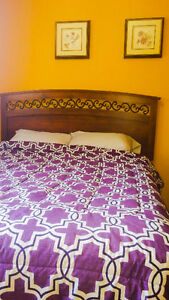 Room for rent pay only  $400 for December and January Edmonton Edmonton Area image 1