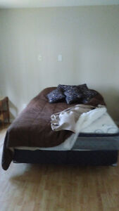 new clean double mattresses and box spring, and steel bed frame.
