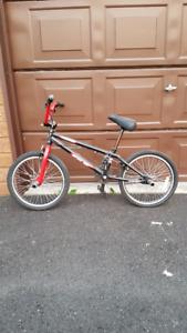 BMX Jamie Bestwick GT bike