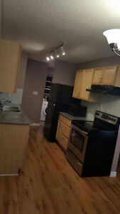 Amazing Two Story Apartmentt Condo for Rent
