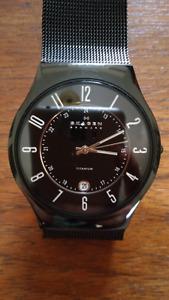 Skagen 233XLTMB Titanium Watch