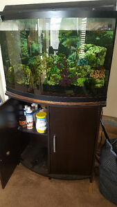Fish Tank 30 gal with stand Strathcona County Edmonton Area image 2