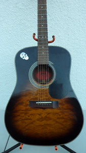 Vantage Acoustic Guitar with Grovers $120