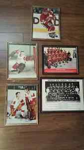 Detroit Red Wings 8 x 10 pictures