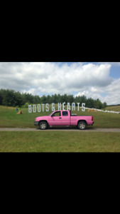 2004 Chevy pink!! Breastcancer official colour!!