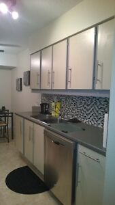 fully furnished and renovated one bedroom apartment Edmonton Edmonton Area image 7