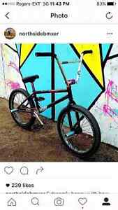 Fully custom top of the line parts bmx bike