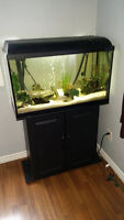Complete 35 Gallon Fish Tank / Aquarium