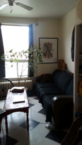 ONE BEDROOM,  bachelor-style w/walkout,  QUEENS/Downtown