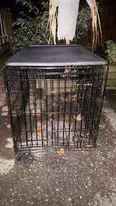 Large size dog crate