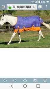 "78"" heavyweight horse blanket NEW"