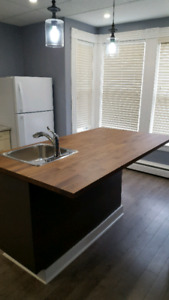 Modern-  1 Bedroom downtown apartment Available December 1!