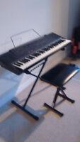 Technics Portable Keyboard KN 220