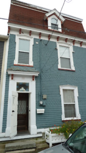 Downtown 3 bedroom home, heritage character, modern kitchen