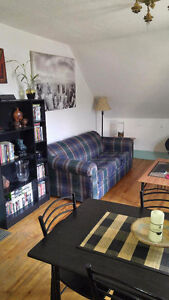 Looking for a Roommate, Two Bedroom Apartment