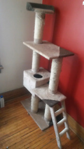Well loved cat tree