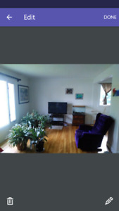 Room for rent near algonquin college and baseline