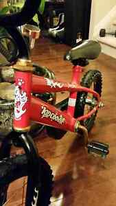 "Fire Dog Kid Cool Bicycle 14"" Tires and Rims"