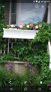 Planter Boxes with wall/deck railing mounts