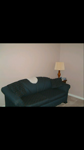 Moving sale - sofa bed